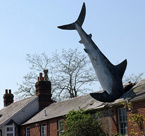 The Headington Shark in Oxford